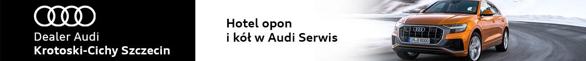 Audi Grudzień